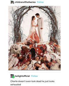 Twilight Hate, Twilight Jokes, Twilight Movie, Twilight Saga Series, Stupid Funny Memes, Hilarious, Twilight Photos, Movie Memes, Funny Tumblr Posts