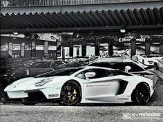 Custom Lamborghini Aventador..