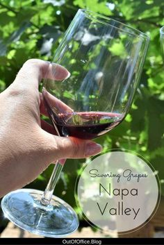 Have you been to Napa Valley? It is the perfect wedding destination, romantic retreat, girls weekend or mother daughter trip. Napa, California