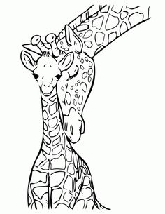 Baby Giraffe With Mommy Coloring Page Free Printable