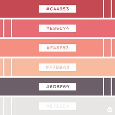 Color Palette | Color Inspiration