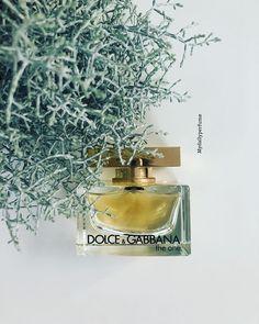 12 beste afbeeldingen van Fragrance & Art Geur, Roos en