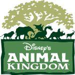 Disney- Animal Kingdom