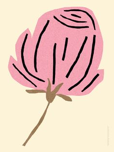 """Rose Drawing Coyote Atelier illustration inspiration: """"Rose"""" by Sarah Neuburger. Rose Illustration, Illustration Inspiration, Graphic Illustration, Plant Drawing, Painting & Drawing, Photocollage, Poster S, Motif Floral, You Draw"""