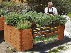 Planting on raised garden beds brings many benefits compared to planting on the ground. But the most crucial one is you can grow a garden even in a Raised Vegetable Gardens, Raised Garden Beds, Raised Beds, Herb Garden Design, Vegetable Garden Design, Herbs Garden, Diy Garden, Terrace Garden, Indoor Garden