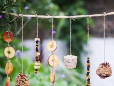 Bird Food Garland.... I need to make one... my feathered friends have almost eaten all the seeds in the garden already.