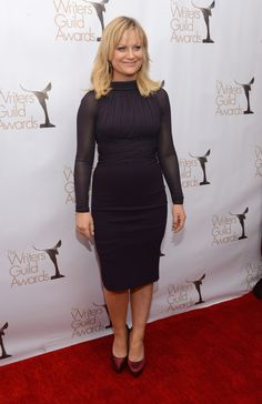 Amy Poehler At The 2013 Writers Guild Awards