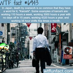 WTF Fun Facts is updated daily with interesting & funny random facts. We post about health, celebs/people, places, animals, history information and much more. New facts all day - every day! Wtf Fun Facts, Funny Facts, Random Facts, Odd Facts, Crazy Facts, Interesting Information, Interesting History, Interesting Facts, Mind Blowing Facts