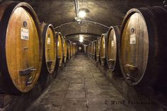 Perfect for a restaurant, a kitchen, a wine shop or a wine cellar! These barrels are used to age the wine at la Badia of Coltibuono (Siena). This is the label on a barrel of Chianti Classico, the…MoreMore  #italyphotography