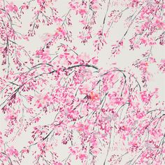 plum blossom - peony fabric | Designers Guild