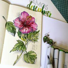 #рисуйкаждыйдень #sketch  #sketchbook #desenho #drawing #art #illustration #rabisco #botanica #botanic #natureza #nature #flor #flower #brasil #tropic #travel #copicmarkers #copics #markers #topcreator #art_we_inspire #desenhotudo #eunadraw #_tebo_ #instaart #vscobrasil #brasil