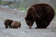 Drinking with Mom by Menno Schaefer on 500px
