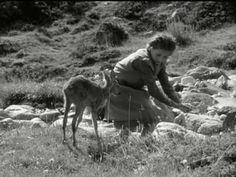 Heidi Teil 1 1952 - YouTube Mafia Crime, Cave Bear, Old Movies, Jerusalem, Caves, Israel, Blessed, Childhood, Animal