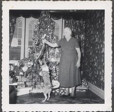lady with dog and tree