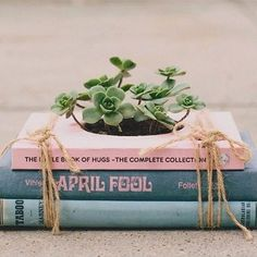 Novel Planter Kits Allow People to Create Refreshing Vintage Home Decor #homebody #gifts trendhunter.com