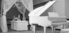 Details Of Elegance Non Profit, Weddings, Elegant