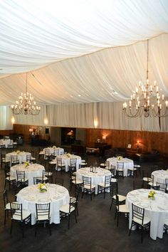 Adaumont Farm. Reception. Rustic venue with draped ceiling.