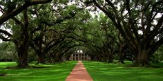Oak Alley Plantation   Yacherie, Lousiana
