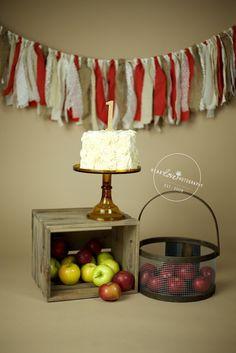 annapolis, md cake smash photography | apple of my eye birthday
