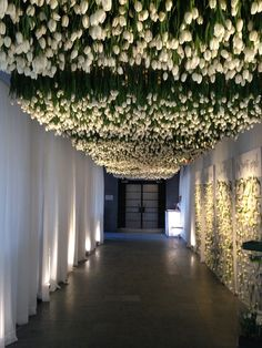 March 2016 wedding.  8000 Canadian grown tulips hung to create a ceiling.