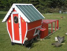 Chicken coops can be fun, cute and funky!