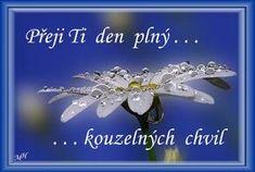 Hezk� den Funny Texts, Slogan, Good Morning, Congratulations, Birthdays, Humor, Holiday, Flowers, Motto