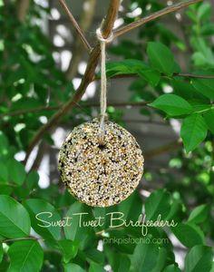 bird3 Bird Seed Feeders, Diy Bird Feeder, Suet Cakes, Bird Seed Ornaments, Easy Bird, Homemade Bird Feeders, Bird Food, Kids Crafts, Summer Crafts