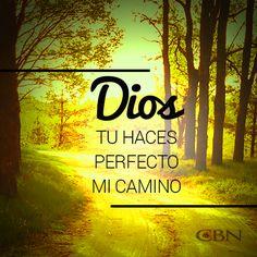 Cuando encomendamos a Dios nuestras decisiones, Él nos toma de la mano para guiarnos por donde es mejor caminar.
