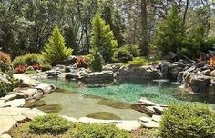 Magnificent Backyard Lagoon
