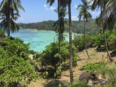 Rewarding view from the top after a hike of Koh Tao in Thailand (3264 x 2448) #reddit