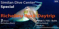 Similan Dive Center™|Similan Islands Scuba Diving Safaris from Khao Lak and Phuket