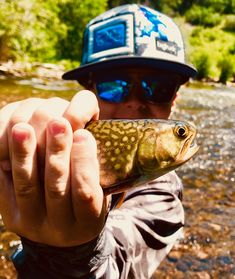 This guy crushed it on the water! Fishing Trips, Fishing Guide, Fly Fishing, Colorado, Guy, River, Kids, Children, Colorado Hiking