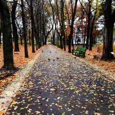 Moldova Country, Sidewalk, Park, Random, Side Walkway, Walkway, Parks, Casual, Walkways