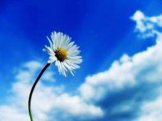 Als je deze dag niet bewust geniet, is hij straks voorbij zonder dat jij er zelf bij was...