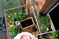 10 Inspiring Gardens for Growing Food in Small Places