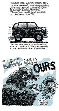 ail des ours