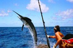 Image result for salvadorian marlin