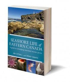 Seashore Life of Eastern Canada Guide Book, Marine Life, Canada, Books, Libros, Book, Book Illustrations, Libri