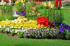 Trucos caseros para tener un jardín sano