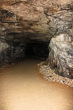 ✯ Mammoth Cave Entrance.  Been there before.  It is AWESOME!