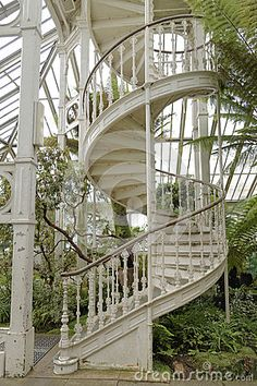 Victorian staircase by Andrewhowson42, via Dreamstime