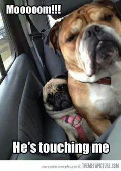 He's touching me!