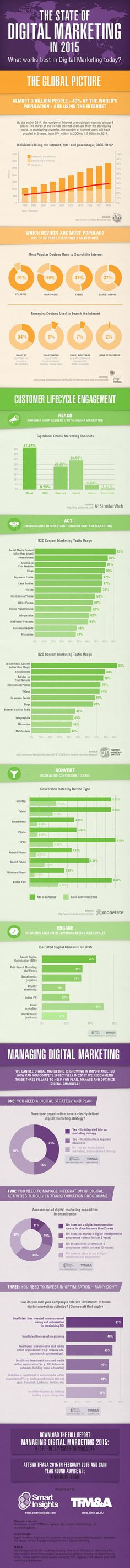 The Global State of Digital Marketing in 2015 #Infographic #digitalmarketing #digitalmarketing2015