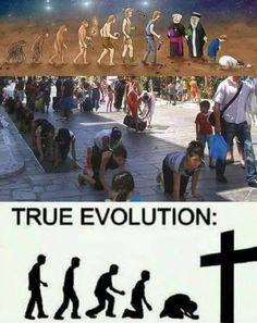 Evolution, History, Ethnic, Historia