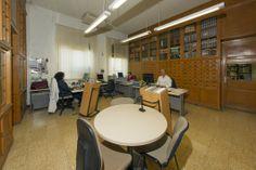 Área de Procesos Técnicos Experimental, Conference Room, Furniture, Home Decor, Special Library, Zaragoza, Filing Cabinets, Classroom, Decoration Home