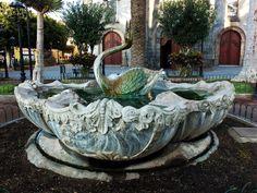 Jardin de la Iglesia, Puerto de La Cruz, Tenerife. Islas Canarias. Spain.  [By Valentín Enrique].