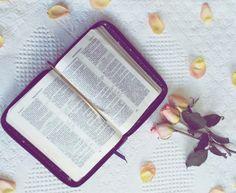 A dificuldade de ler a Bíblia - Ingrid Andrade