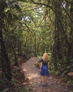 Hiking in Tenorio Volcano Park is not difficult at all and quite impressive