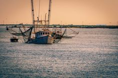 This shrimp boat coming back with their daily catch over in Grand Isle is a sight for sore eyes. Solar Water Heating System, Solar Water Heater, Water Systems, Deepwater Horizon, Grand Isle, Shrimp Boat, Water Pollution, Going Natural, Louisiana