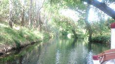 Sul fiume Ciane vicino Siracusa, in mezzo ai papiri.